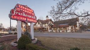 Ресторан цыпленка Zehnder Стоковое фото RF