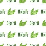 Ресторан eco еды органического vegan здоровый обозначает диетический продукт природы безшовной иллюстрацией вектора предпосылки к Стоковые Изображения RF