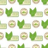 Ресторан eco еды органического vegan здоровый обозначает диетический продукт природы безшовной иллюстрацией вектора предпосылки к Стоковые Фотографии RF