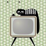 Ретро-введенный в моду приемник телевидения с котом Стоковые Изображения RF