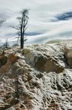 Ретро деталь Mammoth Hot Springs взгляда Стоковое Фото
