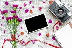 Ретро камера и пустая рамка фото с фиолетовой гвоздикой цветут Стоковые Изображения RF