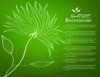 Ретро концепция предпосылки цветка вектор Стоковые Фото