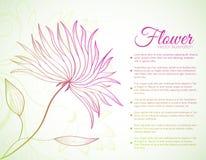 Ретро концепция предпосылки цветка вектор Стоковое Фото