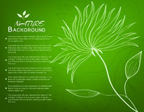 Ретро концепция предпосылки цветка вектор Стоковые Изображения