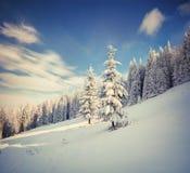 Ретро ландшафт зимы стиля в прикарпатских горах с снегом c Стоковые Изображения