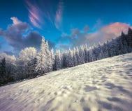Ретро ландшафт зимы стиля в прикарпатских горах с снегом c Стоковое Изображение