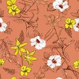 Ретро линия нарисованная рукой цветки эскиза lilly смешивает с белыми hibis бесплатная иллюстрация