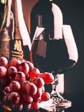 Ретро натюрморт вина стиля Стоковое Изображение RF