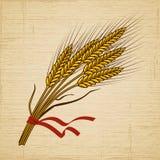 Ретро пшеница Стоковая Фотография