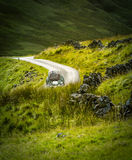 Ретро туристский автомобиль в Шотландии Стоковые Фотографии RF