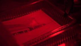 Ретро фото печати в darkroom Darkroom для того чтобы начать фильм и создать фото используя различные химикаты Фото засыхания видеоматериал