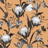 Ретро monotone черные и серые цветки Protea и ботанический garde иллюстрация вектора