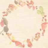 рециркулированная бумага листьев конусов Стоковое Изображение RF