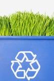 рециркулировать зеленого цвета травы Стоковое Фото