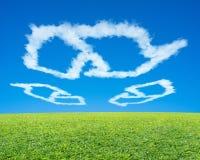 Рециркулирующ символ сформируйте облако в голубом небе с зеленым лугом Стоковые Фото