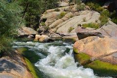 Речная вода каскадируя через мох покрыла утесы горы стоковое фото rf