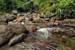 Речная вода пропуская через утесы, река Reshi, Reshikhola, Сикким стоковое фото rf