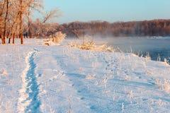 Речной берег в зиме Стоковое Изображение