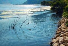 Речной берег Дуная стоковое фото rf