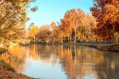 Речной берег осени Стоковое фото RF
