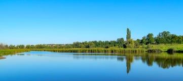 Речной берег с отражением деревьев в воде, дне лета солнечном стоковая фотография rf