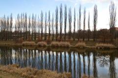 речной берег Стоковое фото RF