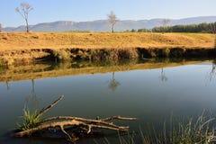 Речной берег 3 Стоковые Фото