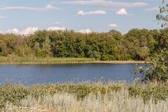 Речной берег стоковое изображение