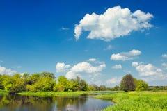 речные воды Польши narew ландшафта потока Стоковое фото RF