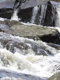 Речные пороги 4 белой воды Стоковое Изображение