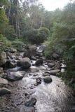 Речные пороги Валенсия реки Casaroro, Negros, Филиппины Стоковое Фото