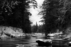 Речные пороги вискиа Стоковое Фото