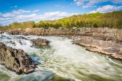 Речные пороги в Потомаке на больших падениях парке, Вирджинии Стоковая Фотография RF