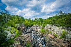 Речные пороги в Потомаке на больших падениях, увиденных от Olmsted Стоковая Фотография RF