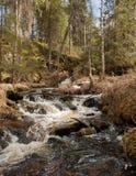 Речные пороги глуши в Puolanka, северной Финляндии стоковое фото rf