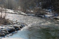 Речные пороги зимы Стоковые Фото