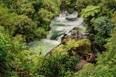 Речные пороги и старая электростанция, падения Okere, NZ стоковое фото rf
