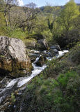 Речные пороги на реке Marteg Стоковые Фото