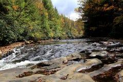 Речные пороги на реке - ohiopyle, PA стоковое фото rf