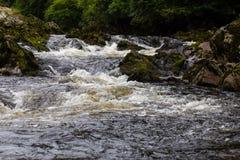 Речные пороги реки пропуская Стоковое фото RF