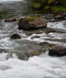 Речные пороги реки Стоковые Изображения RF