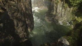 Речные пороги реки Capilano, северный Ванкувер сток-видео