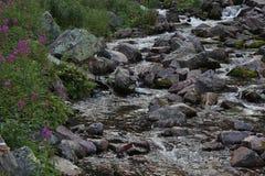 Речные пороги Njupeskaer Стоковые Фотографии RF