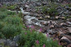 Речные пороги Njupeskaer Стоковая Фотография