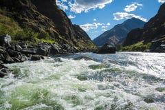 Речные пороги Whitewater в каньоне адов, Айдахо стоковое изображение