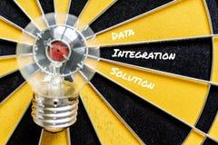 Решение интеграции данных бежит внутри к цели лампы шарика идеи Стоковое Фото