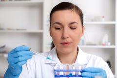 Решение ученого рассматривая в чашка Петри на лаборатории стоковое фото
