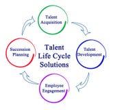 Решения жизненного цикла таланта Стоковые Изображения RF