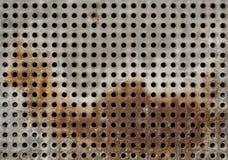 решетка ржавая Стоковая Фотография